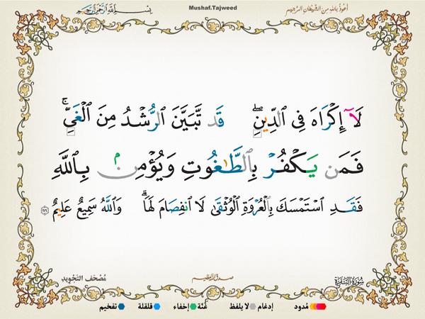الآية 256 من سورة البقرة الكريمة المباركة Aeoo_223