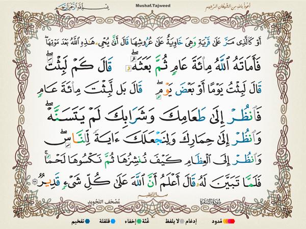 الآية 259 من سورة البقرة الكريمة المباركة Aeoo_226