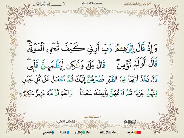 الآية 260 من سورة البقرة الكريمة المباركة Aeoo_227