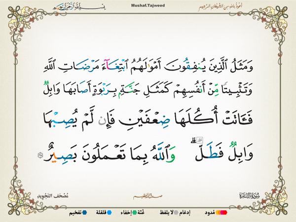 الآية 265 من سورة البقرة الكريمة المباركة Aeoo_233