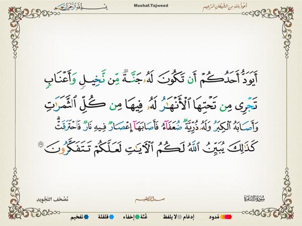 الآية 266 من سورة البقرة الكريمة المباركة Aeoo_234