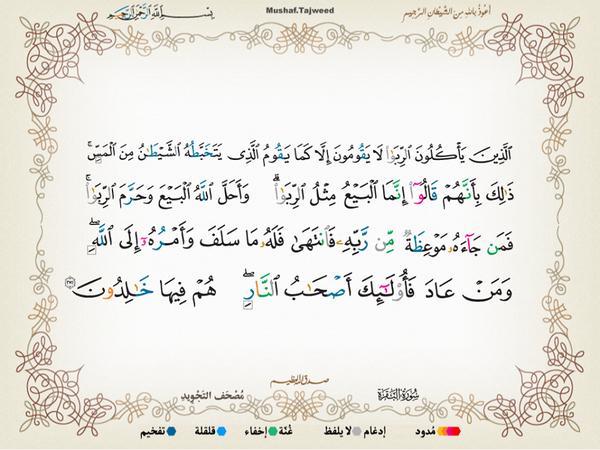 الآية 275 من سورة البقرة الكريمة المباركة Aeoo_243
