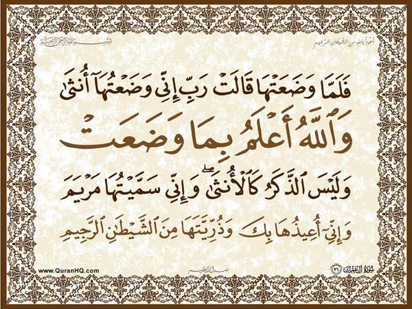 الآية 36 من سورة آل عمران الكريمة المباركة Aeoo_317