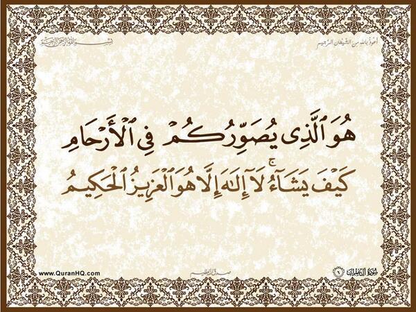 الآية 6 من سورة آل عمران الكريمة المباركة Aeoo_610