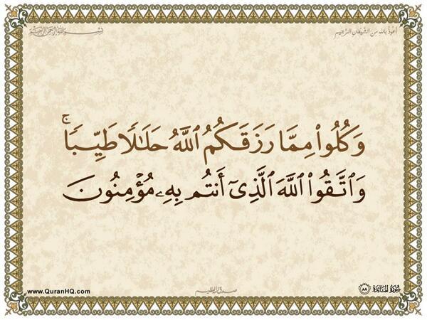 الآية رقم 88 من سورة المائدة الكريمة المباركة Aeoo_a75