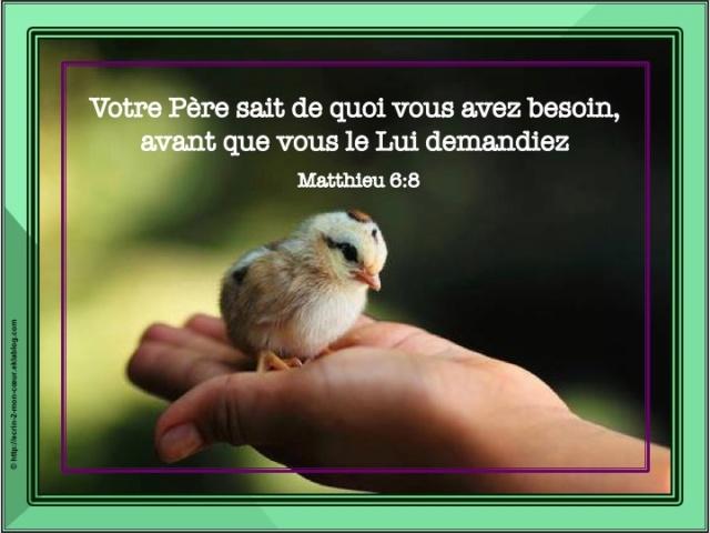 Les plus belles pensées de tous les jours... - Page 2 Oiseau10