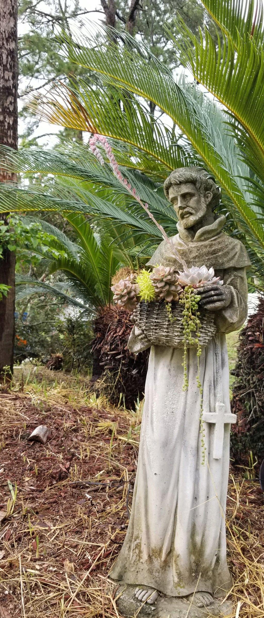 Tượng thánh Francis  20200718