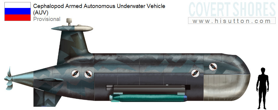 Underwater Drones of the Russian Navy - Page 2 000210