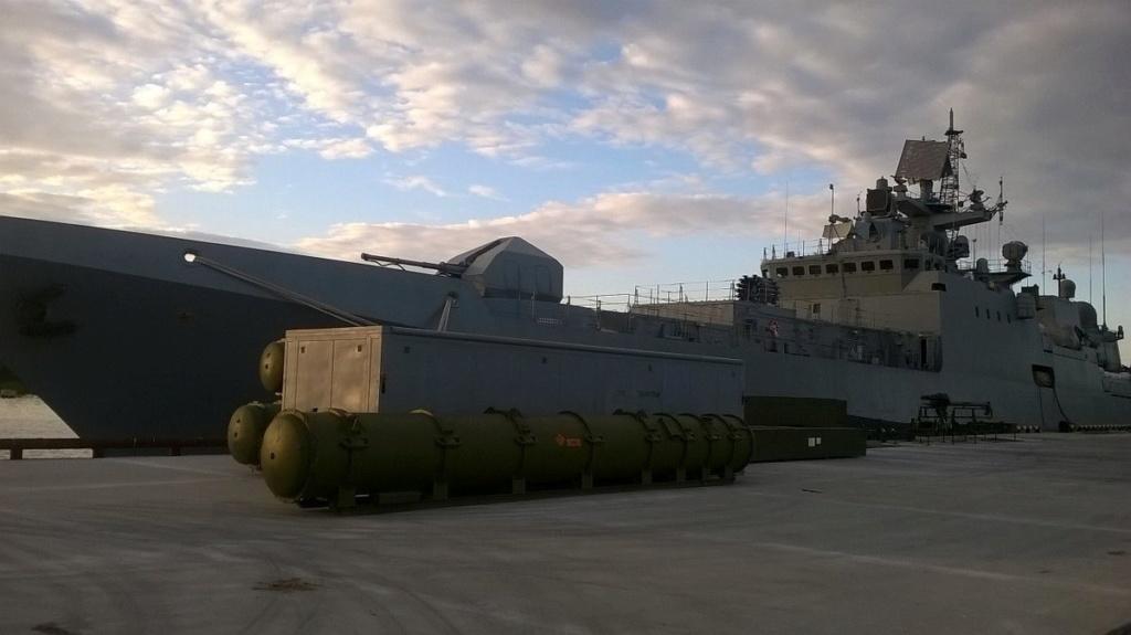 "Project 22800: ""Karakurt"" class missile ship - Page 22 020710"