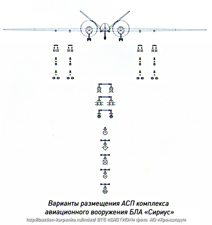 UAVs in Russian Armed Forces: News #2 - Page 6 Sirius10