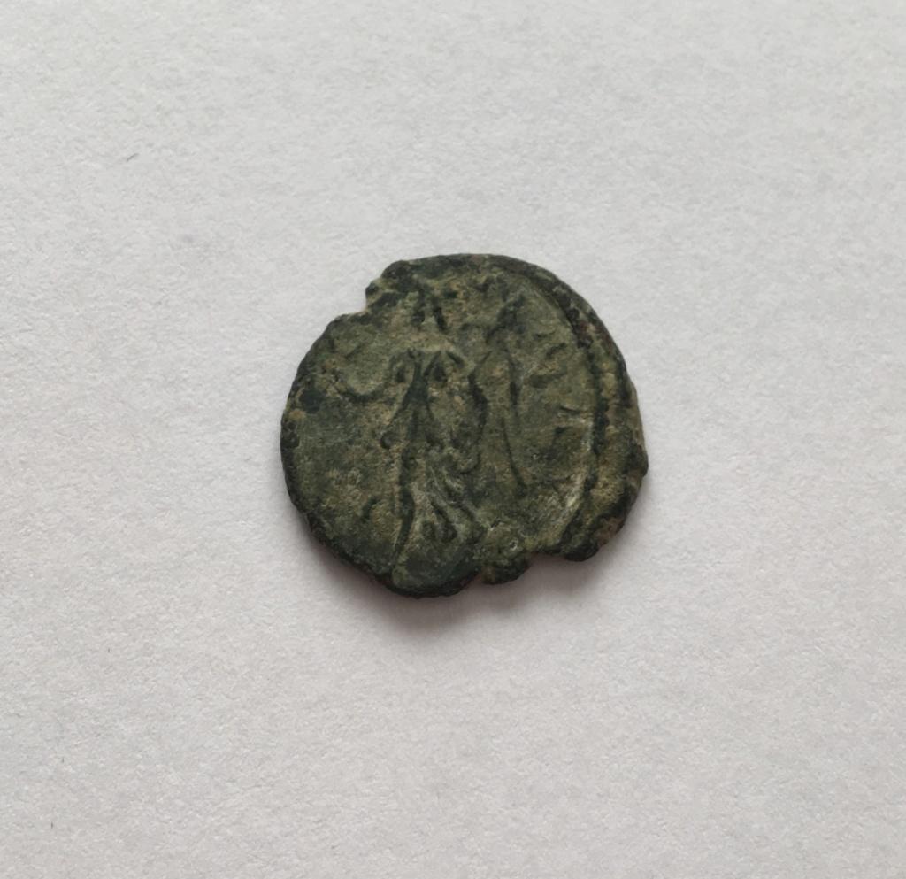Identification  6b11d610