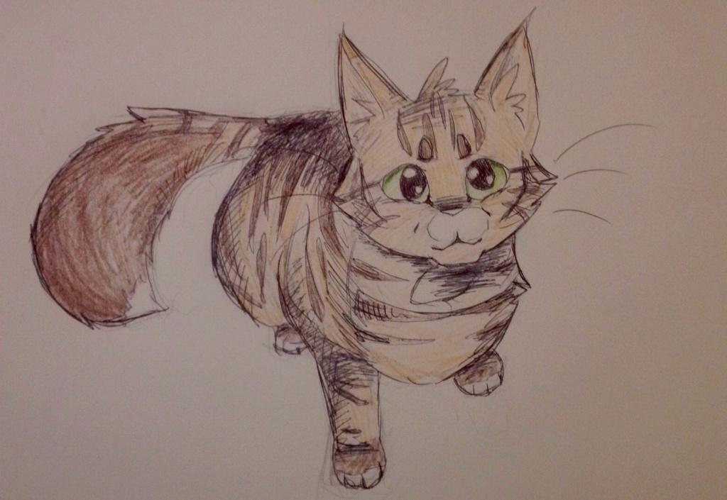 Anyone want their kitties hand-drawn? Blosso13