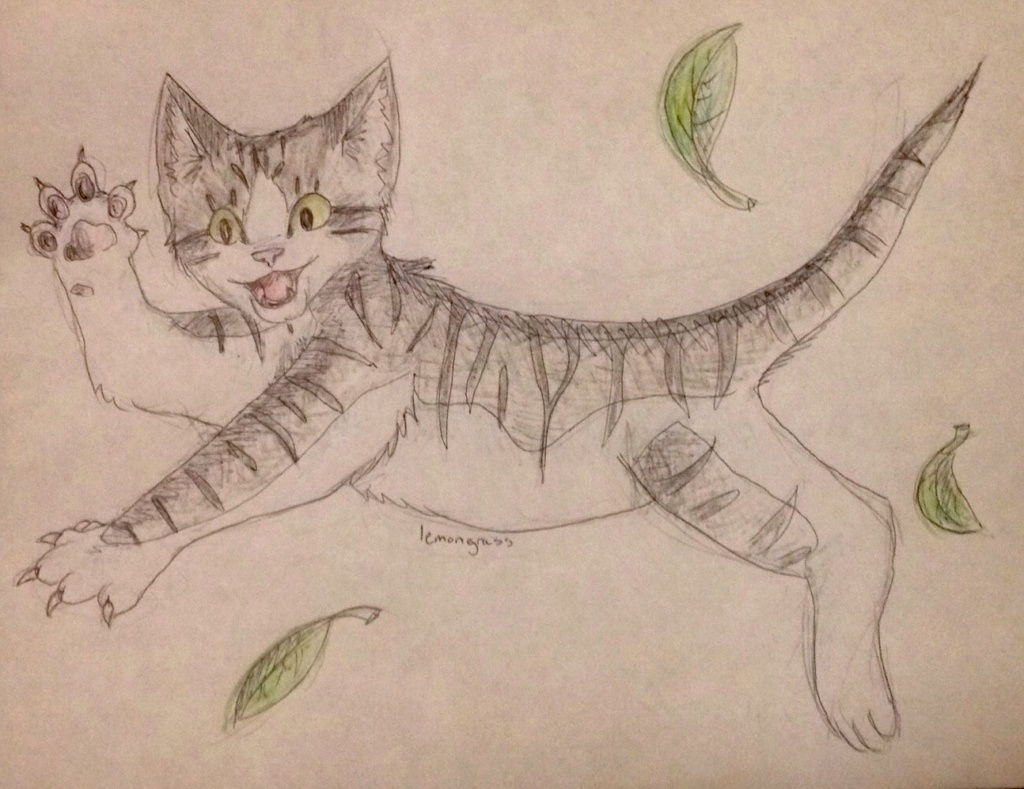 Anyone want their kitties hand-drawn? Briark12