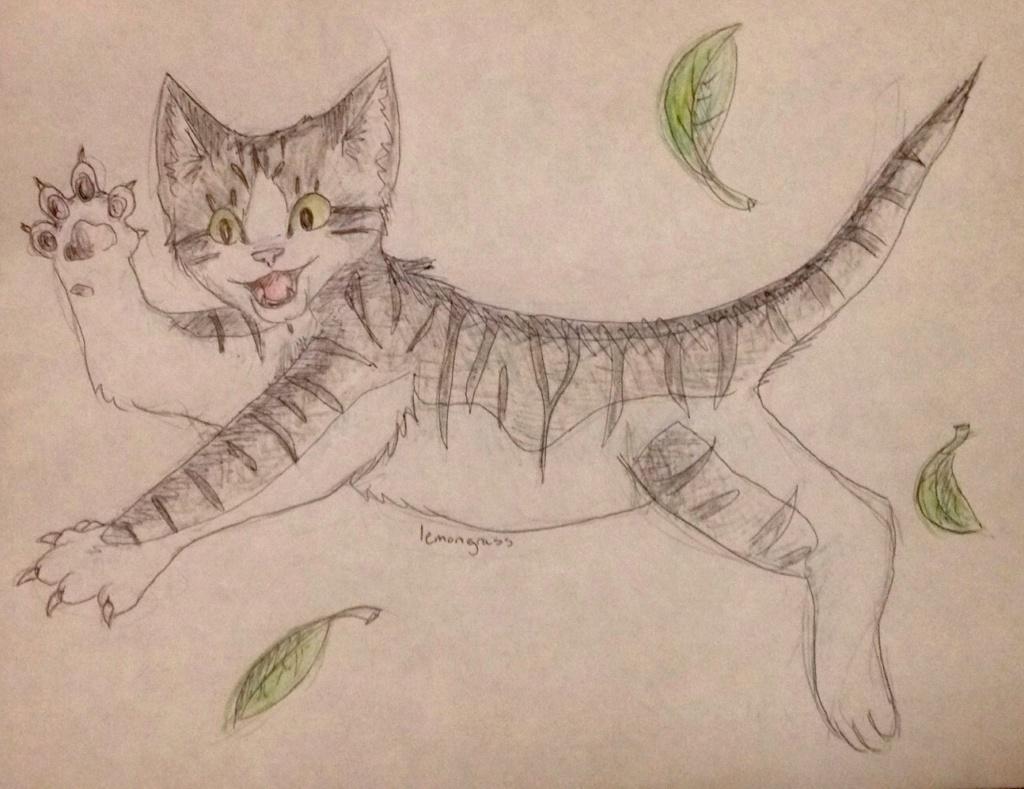 Anyone want their kitties hand-drawn? Briark13