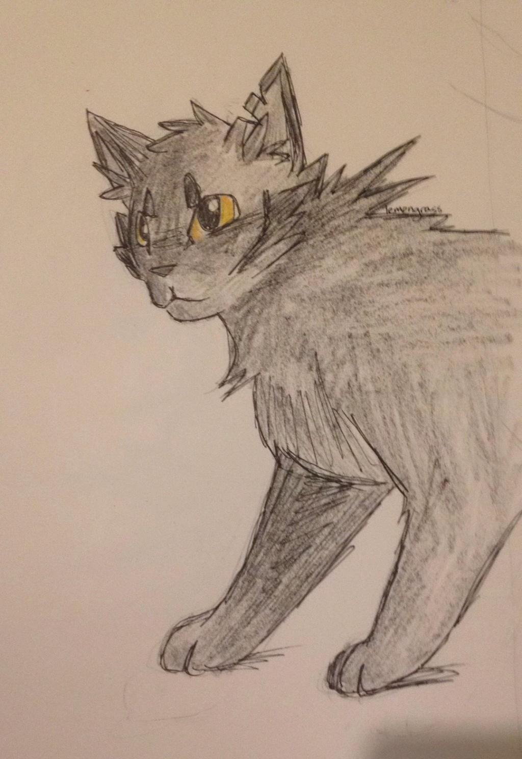 Anyone want their kitties hand-drawn? Crowfu11