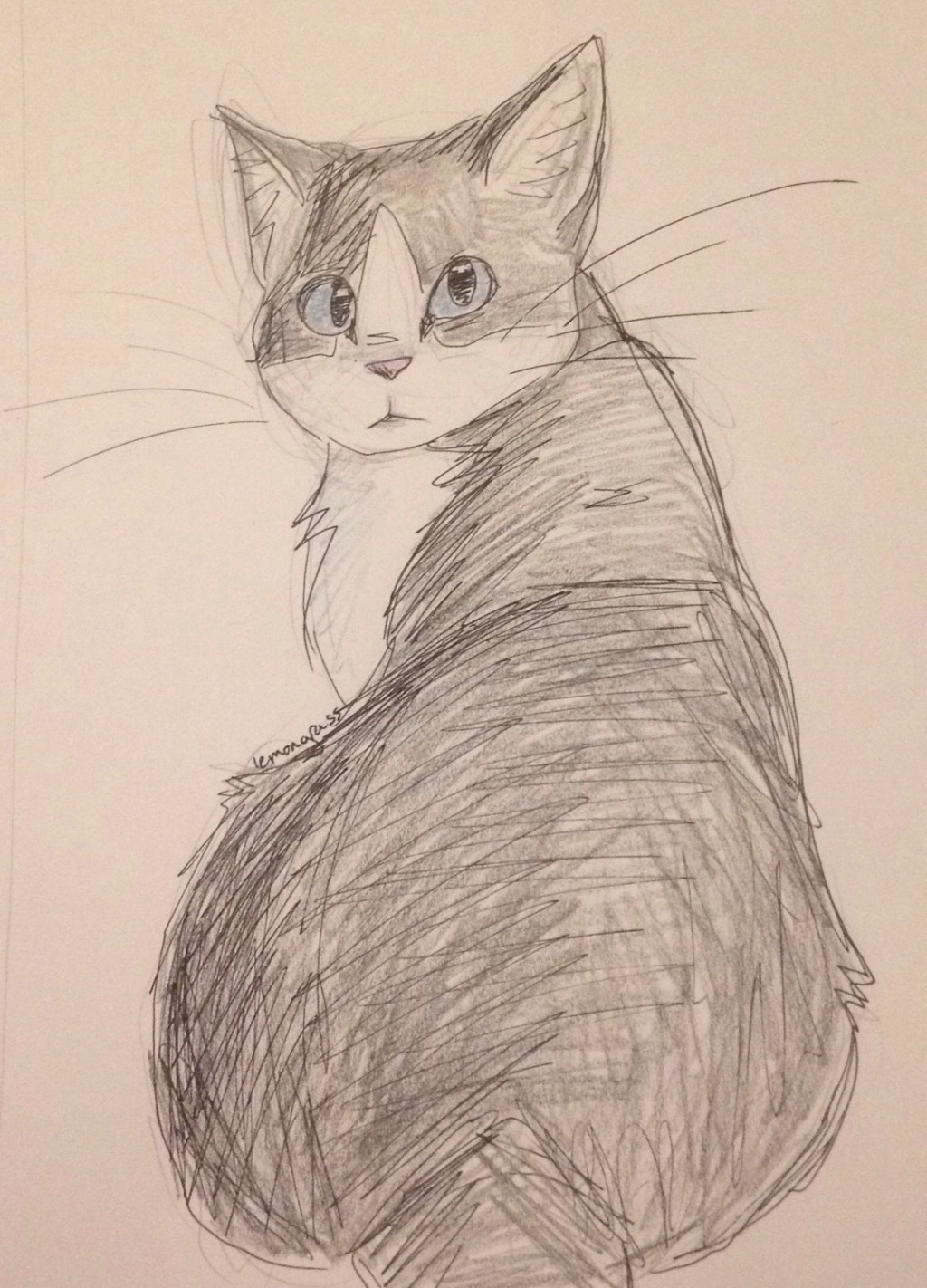 Anyone want their kitties hand-drawn? Echopa11