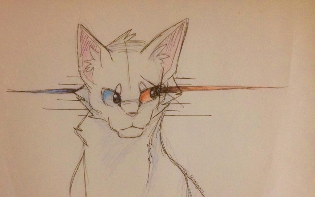 Anyone want their kitties hand-drawn? - Page 2 Icepaw10