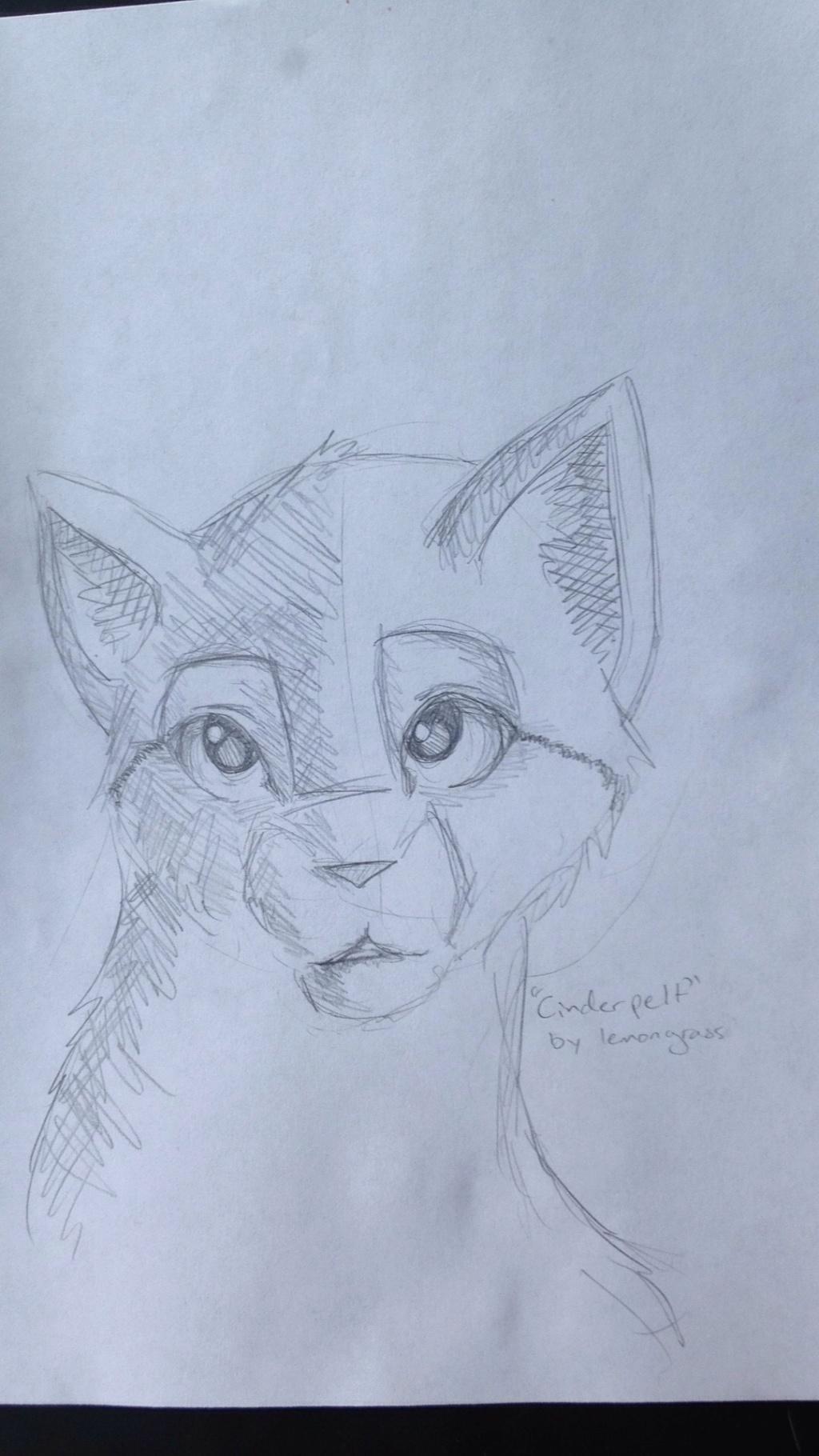 Anyone want their kitties hand-drawn? Img_1310