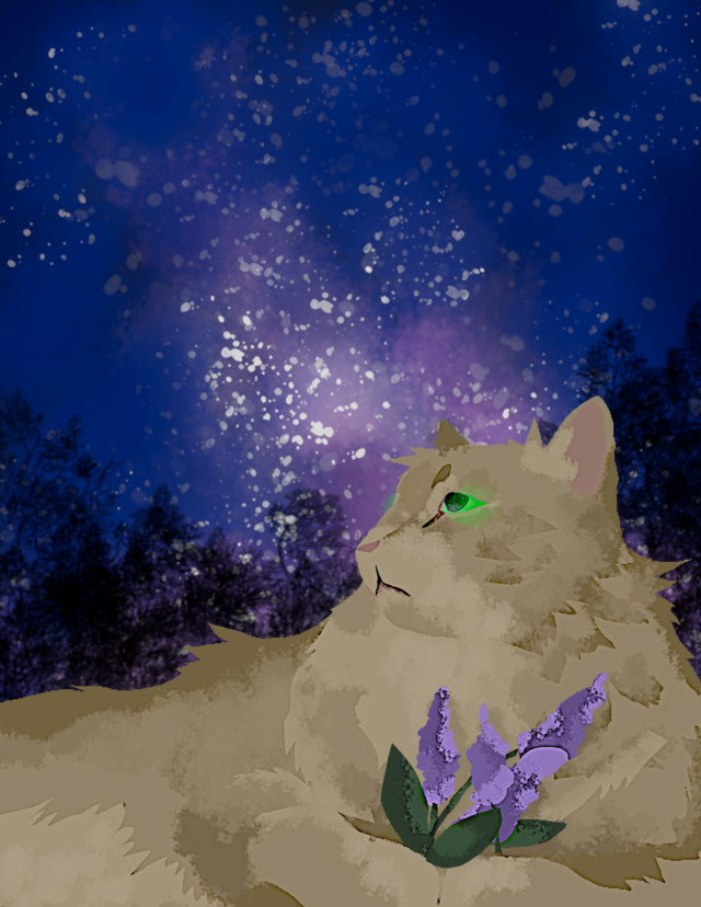 let me draw your kitties for you pt. 2 (digital edition) Prickl10