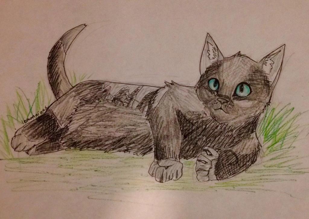Anyone want their kitties hand-drawn? Ravenk11