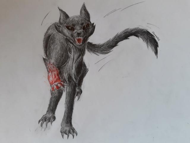 Gepards (seltene) Zeichnungen  20190413