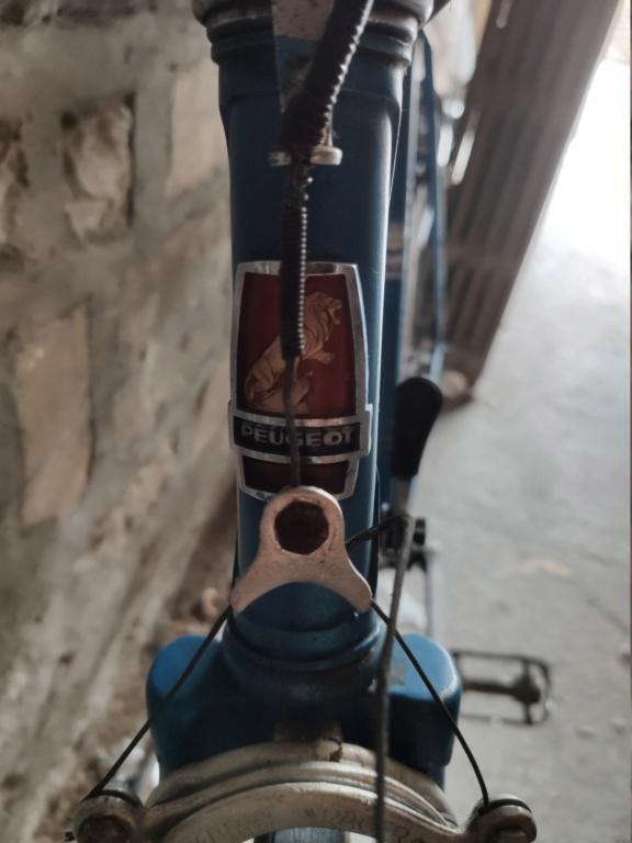 Vélo inconnu peugeot ou mercier ou les deux....?  Img_2010