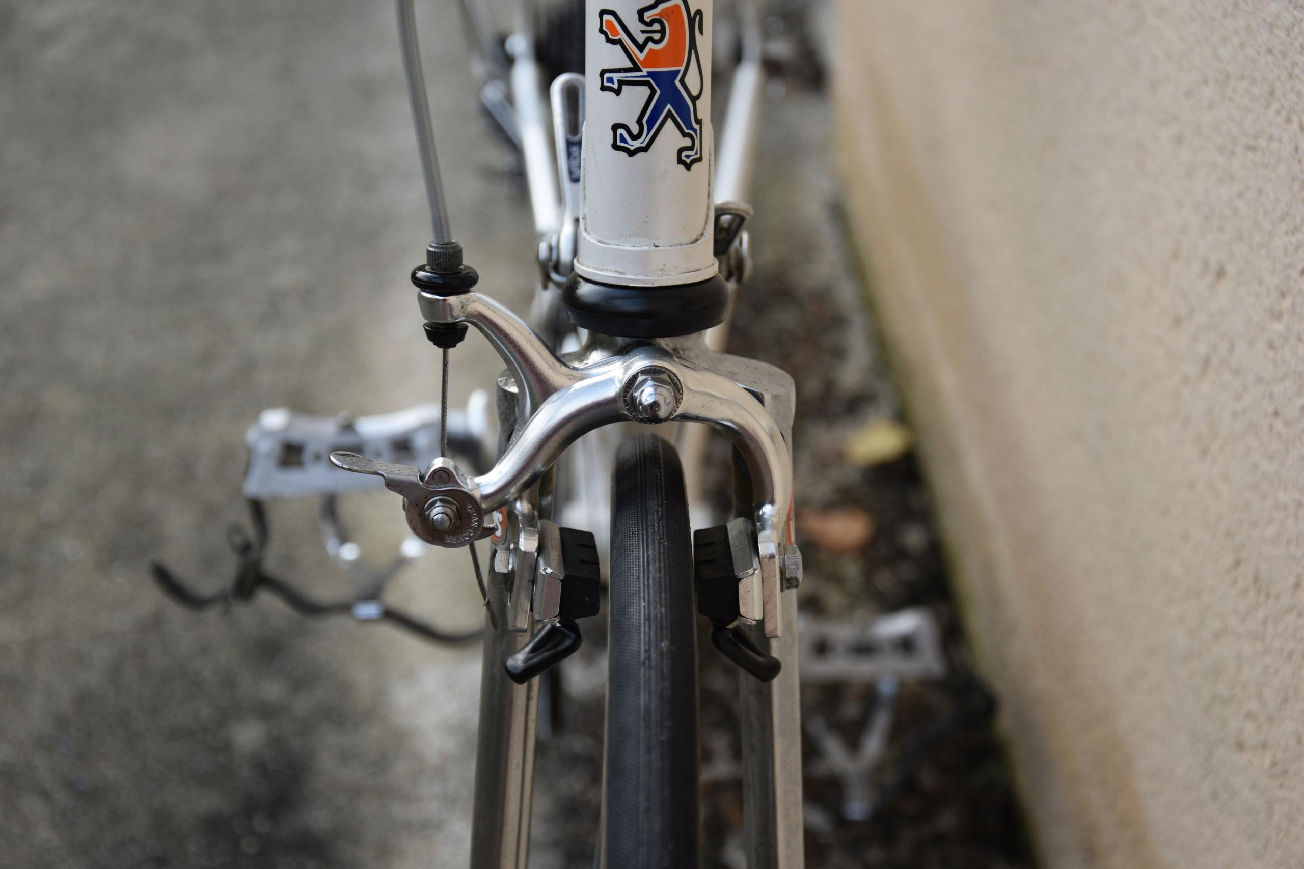 Peugeot aux yeux bridés  Dsc_0112
