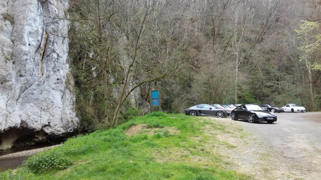 Sortie Flash 27/03 : GERS - Les gorges de la Save 20210310