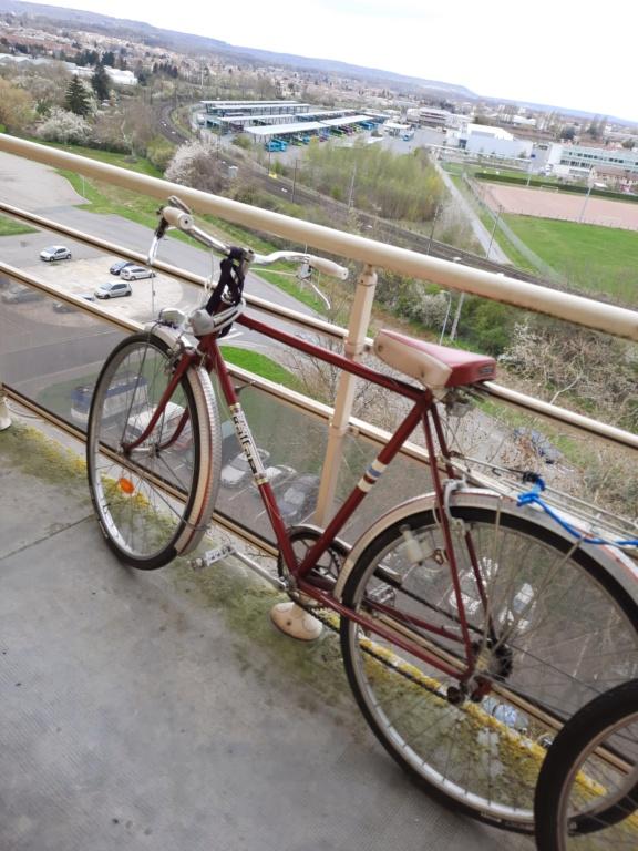 Informations vélo marque Galfa 20210419
