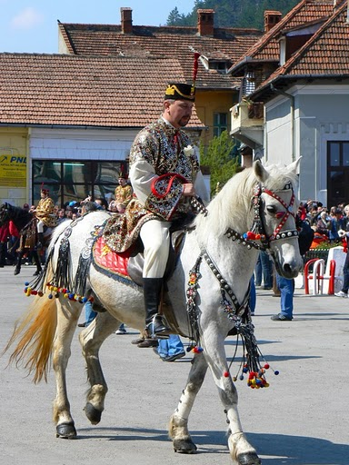 chevaux : harnachement divers ..... P1270310