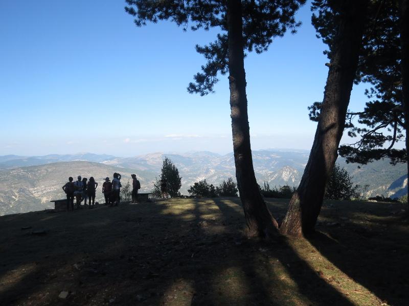 Yocco et Anook au Mont Serein 01_mon10