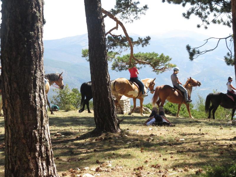 Yocco et Anook au Mont Serein 06_che10