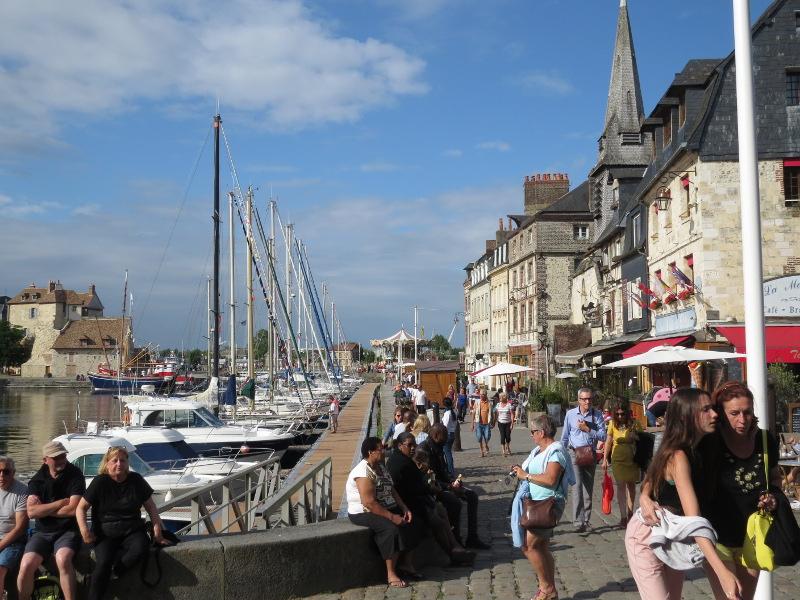 Yocco et Anook en Normandie 20_hon10