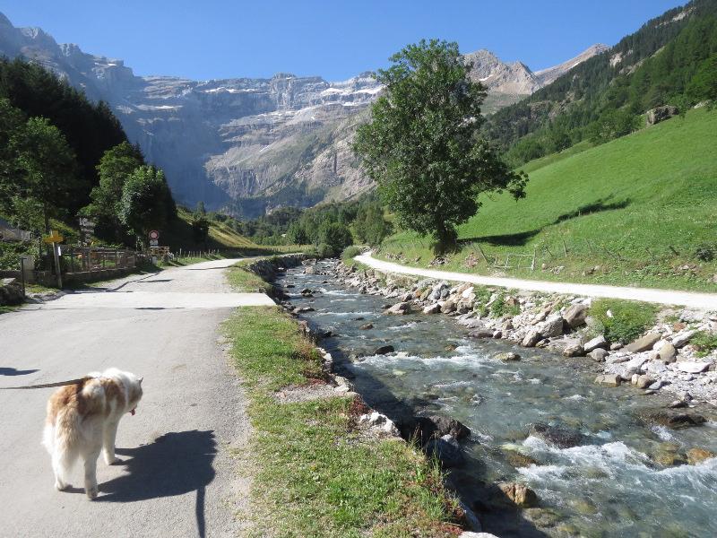 Yocco et Anook dans les Hautes-Pyrénées 61_ano10