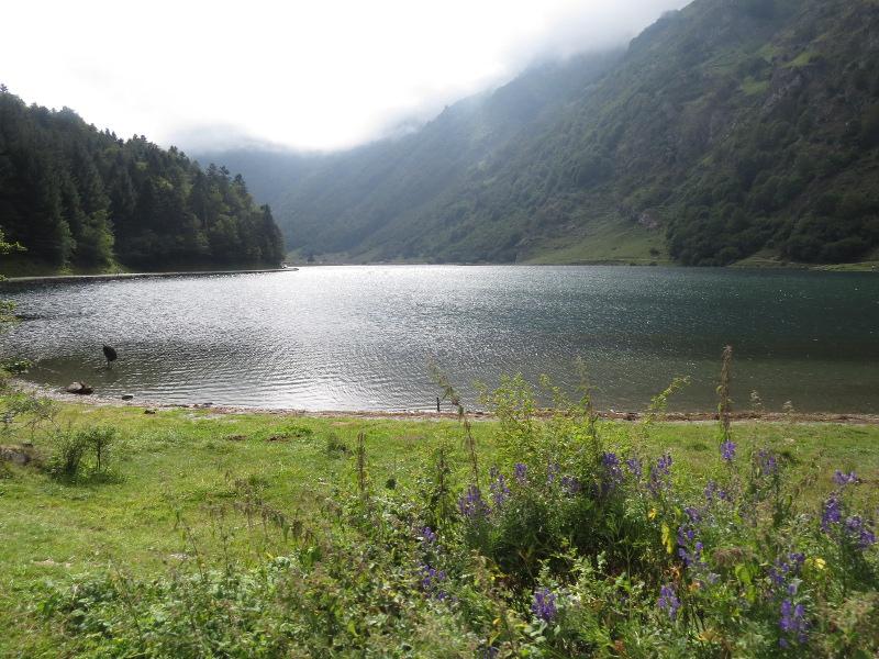 Yocco et Anook dans les Hautes-Pyrénées 66_lac10