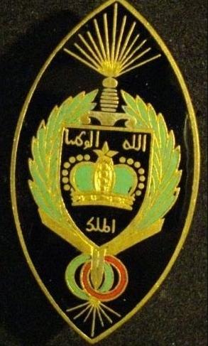 BLS - Brigade Légère de Sécurité Gls10
