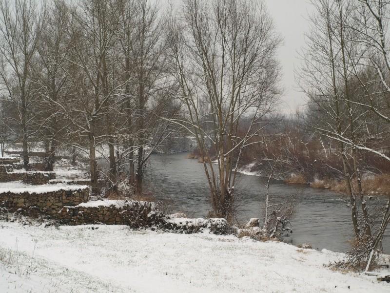neige en bord de loire P1052710