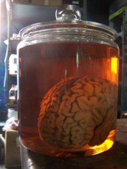 1: Jan Mucha - Dropsy Brain_10
