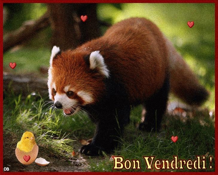 Ici on se dit bonjour  - Page 2 0ba36b10