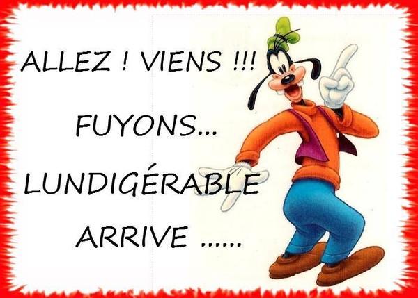 Ici on se dit bonjour  - Page 40 74ec6a10