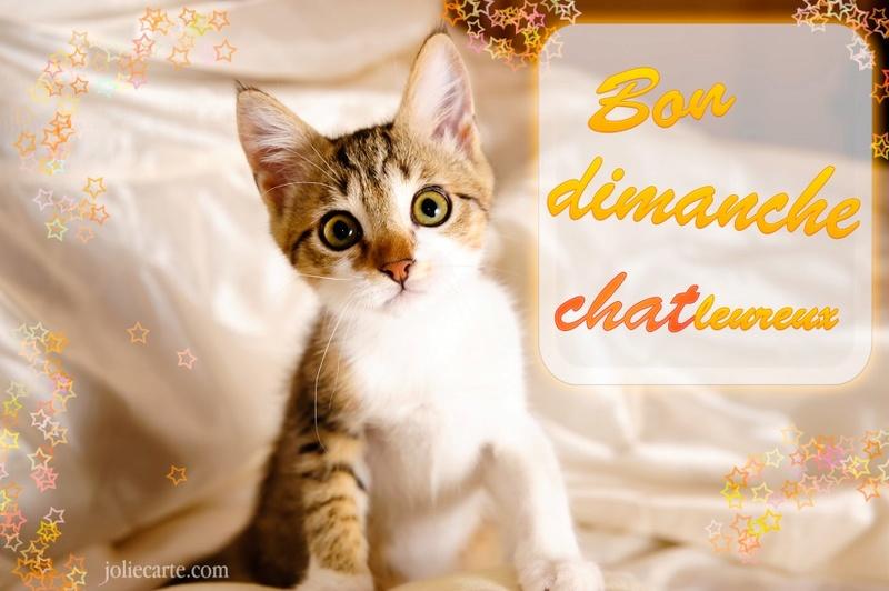 Ici on se dit bonjour  - Page 2 Bon-di10