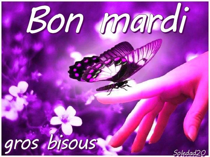 Ici on se dit bonjour  Mardi_12