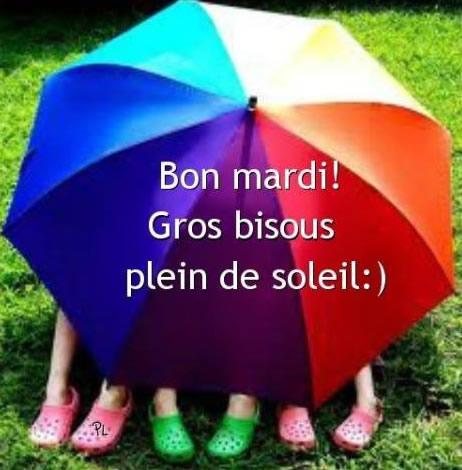 Ici on se dit bonjour  - Page 2 Mardi_13