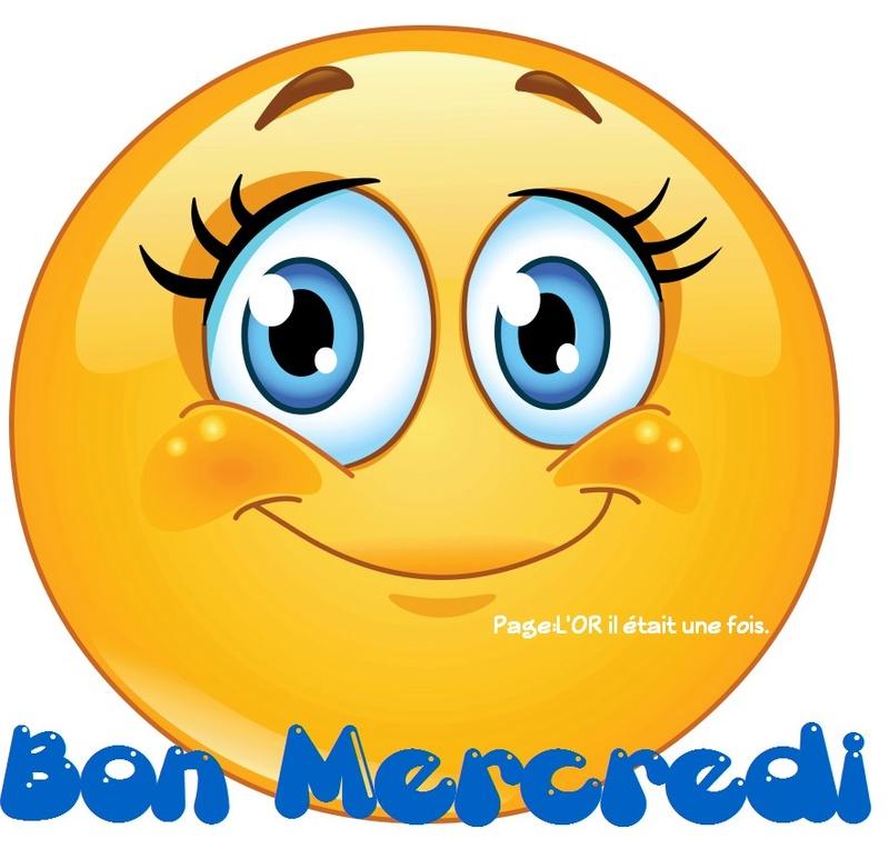 Ici on se dit bonjour  - Page 2 Mercre13