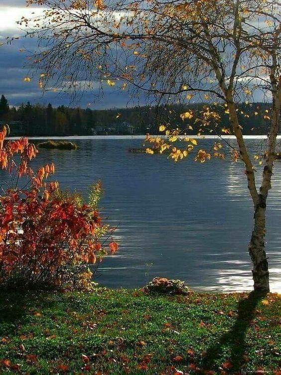 Photos d'automne - Page 2 1c300d10