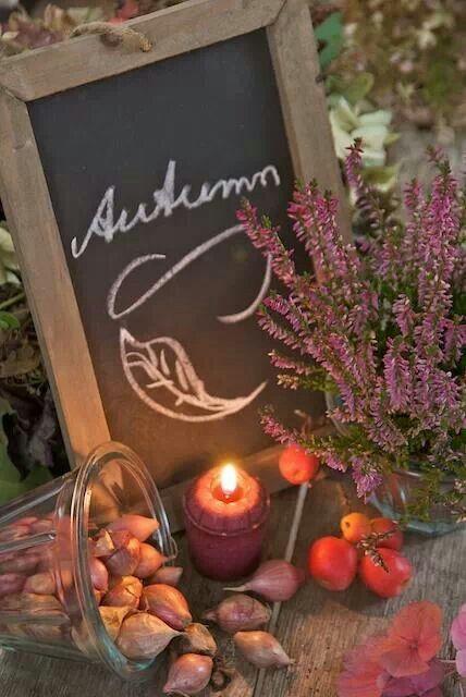 Photos d'automne - Page 2 75bb5910