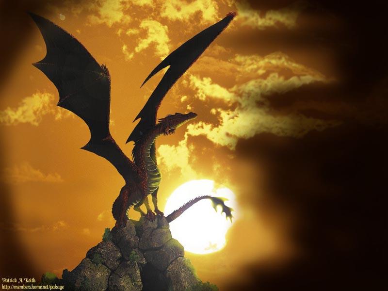 Dragons de Feu Dragon16