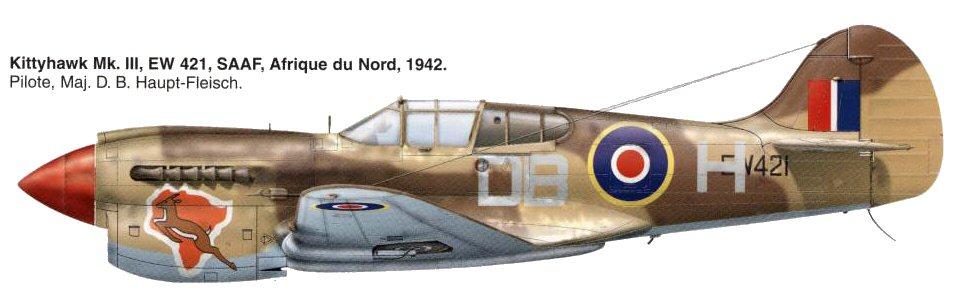 Besoin d'aides pour profils d'avions diverses. Kittyh11