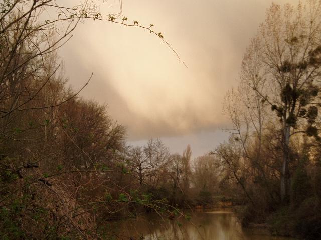 haaaaa la rivière.... - Page 2 Peche_26