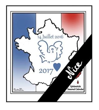 Prise de la Bastille 19990011